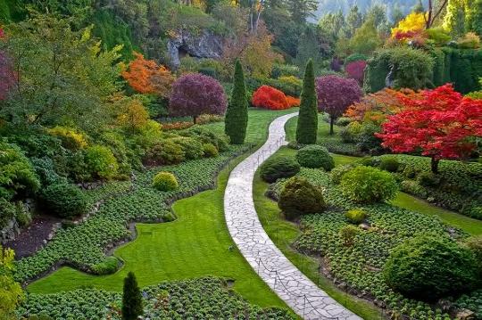 6 sites naturels incontournables en afrique du sud for Jardin kirstenbosch