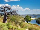 African landscape, Chobe river, Botswana