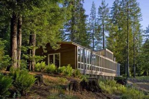 Maison en bois dans la nature