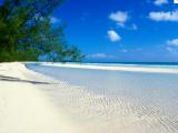 Une plage paradisiaque