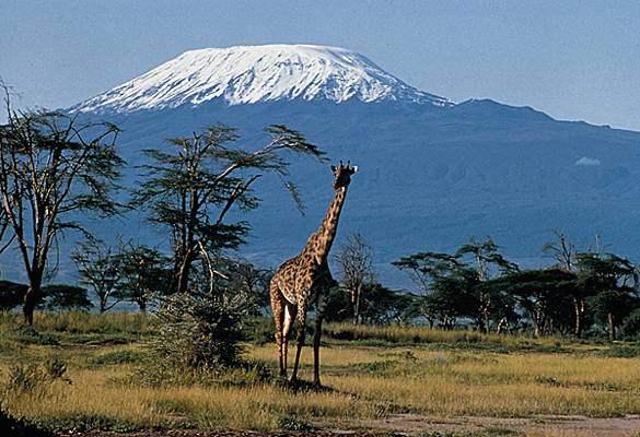 1009375-Kilimandjaro