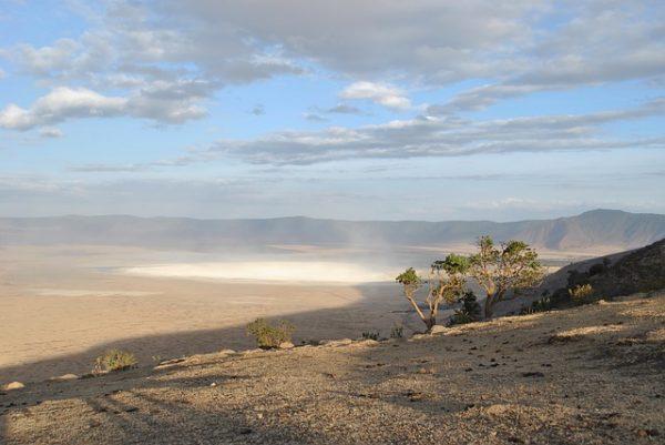 Le cratère du Ngorongoro pour une expérience inoubliable en Tanzanie